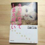 人の目が気になる、人間関係がしんどいと思ったら読む本「ネコになってしまえばいい」| 心屋仁之助さん