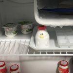 冷蔵庫で動物がしゃべる?Fredgeezoo(フリッジィーズー)を使ってみたよ!