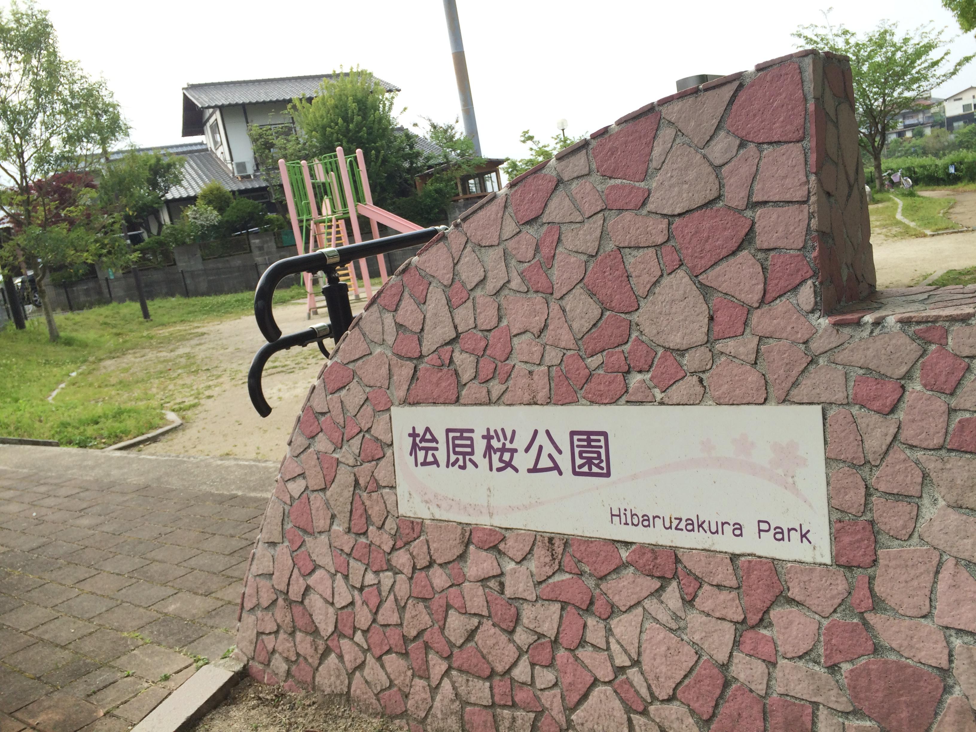 福岡,桧原桜,桧原,桜,福岡市,
