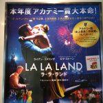 映画『ラ・ラ・ランド』の感想〜 ミュージカル嫌いな私でも楽しめ号泣した夢追い人の映画です