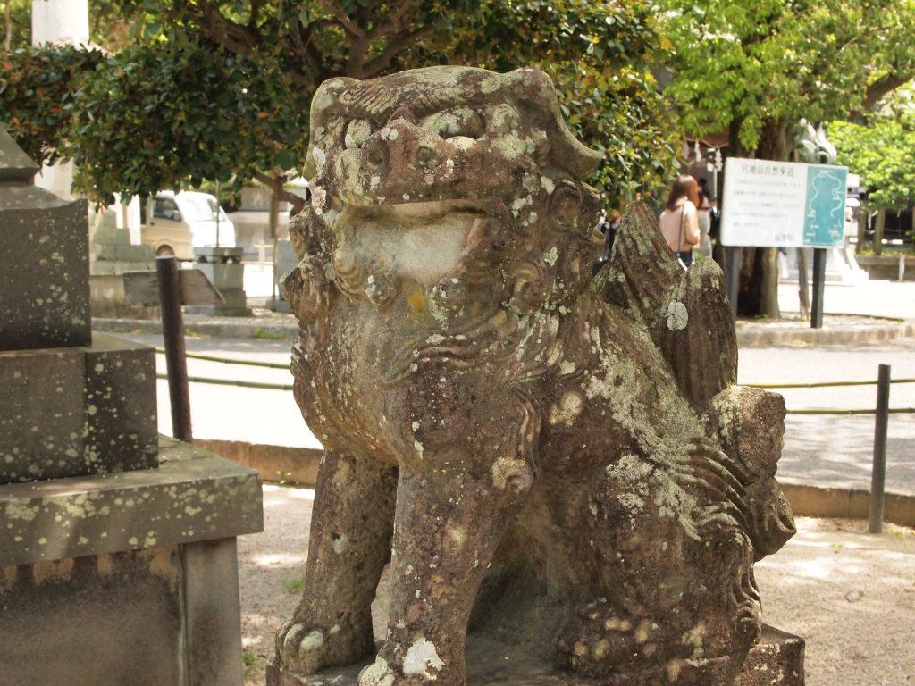 宮地嶽神社,狛犬,狛犬マニア,