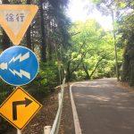 福岡市の油山で人生初トレイルラン!5感をフルに活用して自然を満喫できました。