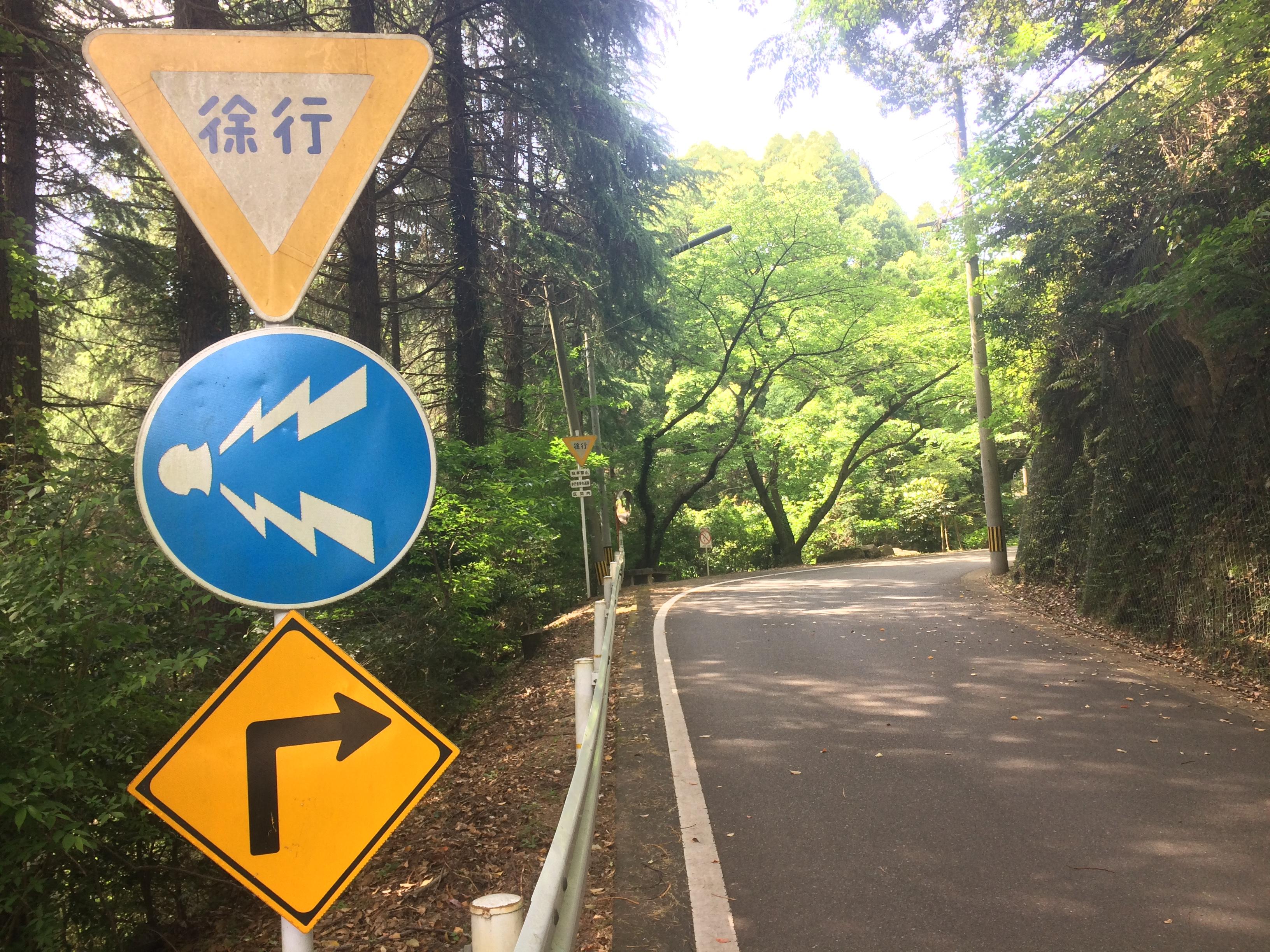 トレイルラン,油山,福岡,福岡市,福岡県,堤小,トレラン,ランニング,マラソン,フルマラソン,run,