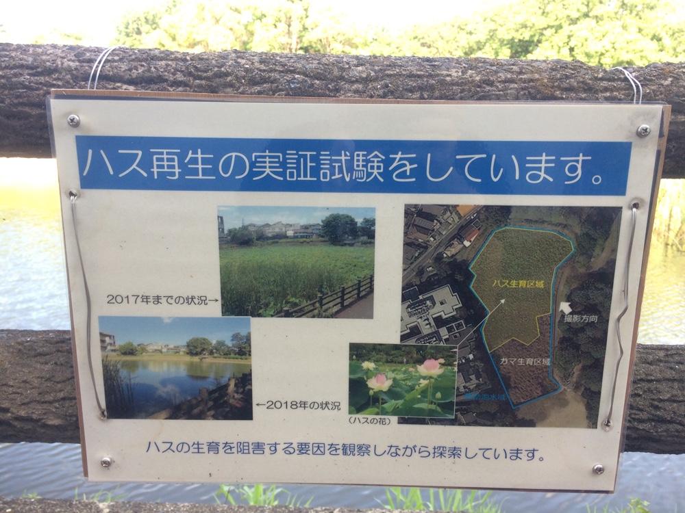 鹿助公園,福岡,南区,西長住,長住,長尾,福岡市,長住団地,ミスターマックス